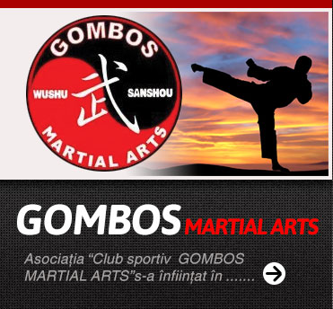 martial arts security servicii